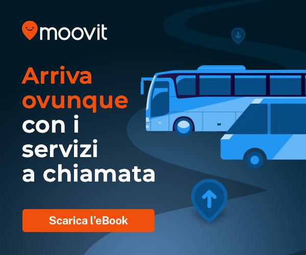 MOOVIT 300X250